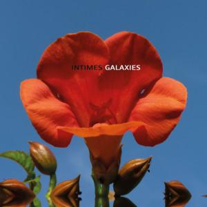 IG-Fleur-sansrien